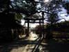 2010_0105_220529dscn0411