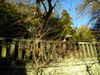 2010_0105_220701dscn0414