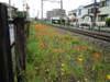 2010_0512_004039dscn1545