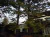 2011_0209_202825dscn1251