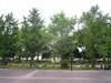 2011_0820_005814dscn2053