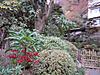 2012_0105_213414dscn3088