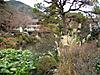 2012_0105_213852dscn3094